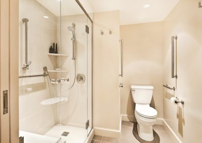 Elegant ADA Bathroom